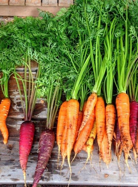 Zumo de zanahoria antioxidante con hinojo y lima