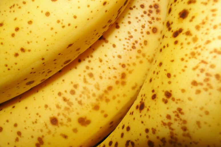 Cómo aprovechar plátanos maduros